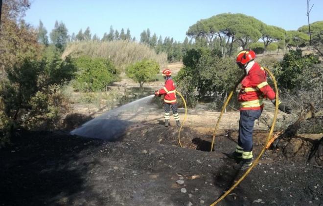 Bombeiros de Sines combateram incêndio na zona de Morgavel