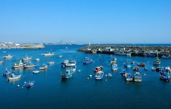 Covid-19: Governo prepara nova linha de crédito de 20 ME para pesca