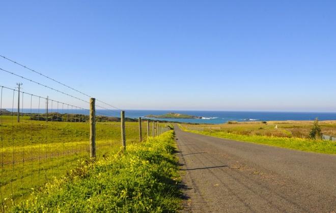 Estrada da Ilha do Pessegueiro em concurso