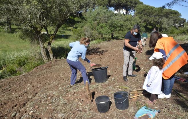 Crianças plantam árvores no Rio da Figueira e aprendem sobre o ambiente
