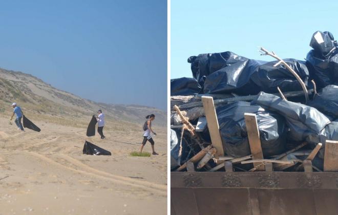 230 voluntários limparam praias da freguesia de Santo André