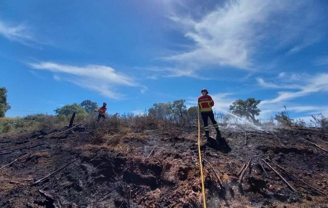 Incêndio consumiu área de mato na zona do Viso, em Grândola