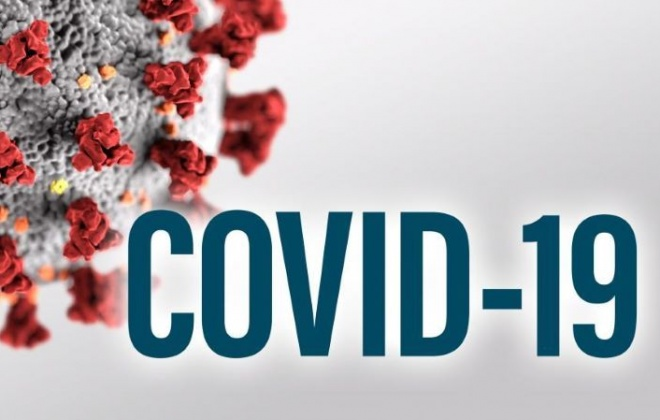 Covid-19: Portugal regista três mortes e 1.497 novos casos, 59 deles no Alentejo