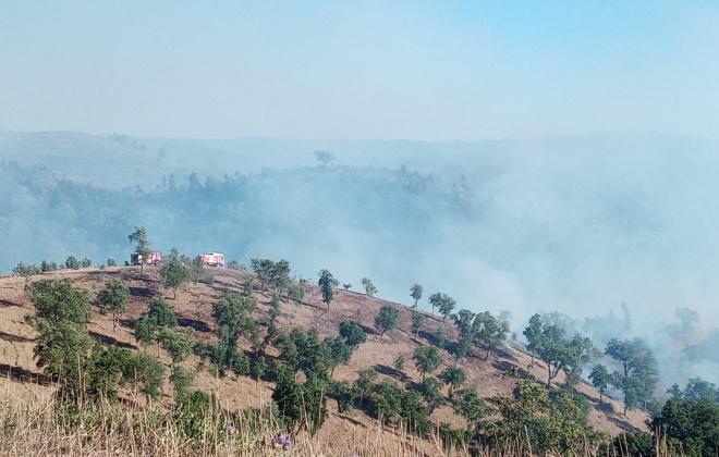 Proteção Civil alerta para risco de incêndios com temperaturas a subir até sábado