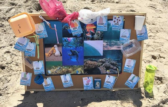 Atividades nas praias de Sines alertam para valores ambientais