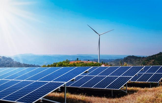"""Empresa estuda """"alternativas"""" para minimizar impacto da central solar de Cercal do Alentejo"""